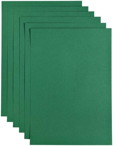 Kopieerpapier Papicolor A4 100gr 12vel dennengroen