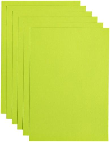 Kopieerpapier Papicolor A4 200gr 6vel appelgroen