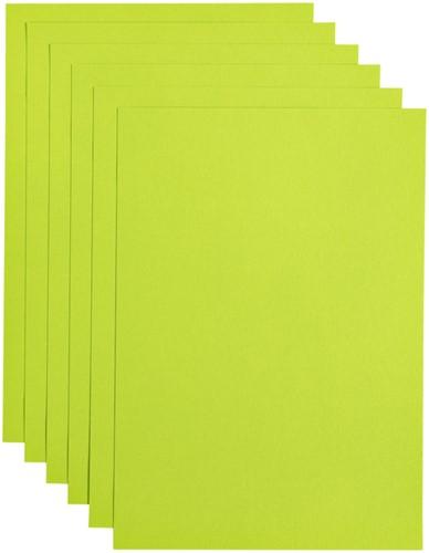 Kopieerpapier Papicolor A4 100gr 12vel appelgroen